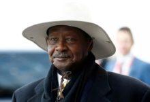 صورة يوغندا: موسفيني يفوز بولاية سادسة ويتغلب على بوبي واين في الإنتخابات الرئاسية