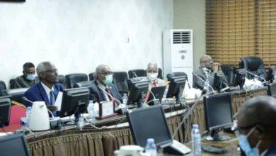 صورة السودان يتمسك بـ«وساطة رباعية» في أزمة «سد النهضة»