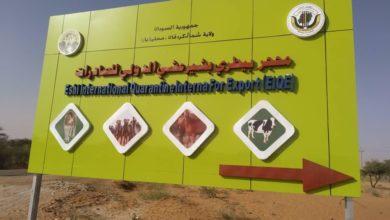 صورة افتتاح أول محجر لصادر الماشية وسط السودان بتكلفة تفوق مليون دولار