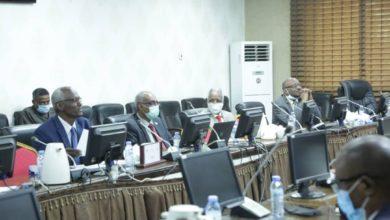 صورة مبعوثو رئيس الكونغو يلتقون وزير الري السوداني