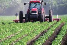 صورة «400» مليون دولار من السعودية والإمارات لدعم الإنتاج الزراعي بالسودان