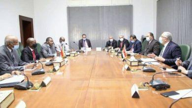 صورة لجان مشتركة لتفعيل اتفاقيات «سودانية مصرية» بقطاع الزراعة والثروة الحيوانية