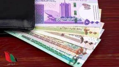 factors aiding to the stability of the sudanese pound